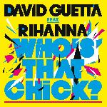David Guetta feat Rihanna   Who s that chick