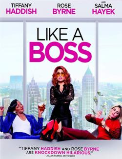 Like a Boss TRUEFRENCH BluRay 1080p
