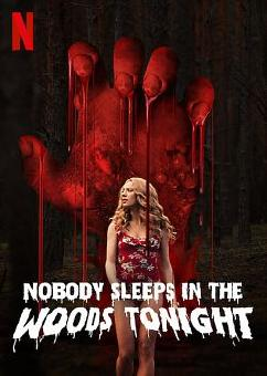Nobody Sleeps in the Woods Tonight FRENCH WEBRIP 1080p