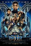 Black Panther TRUEFRENCH DVDRIP