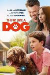 Think Like a Dog FRENCH BluRay 720p