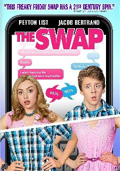 The Swap FRENCH WEBRIP