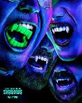 What We Do In The Shadows S02E06 VOSTFR
