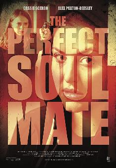 The Perfect Soulmate FRENCH WEBRIP 720p