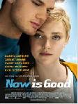 NowIsGoodFRENCHDVDRIP2013